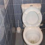 Туалетик